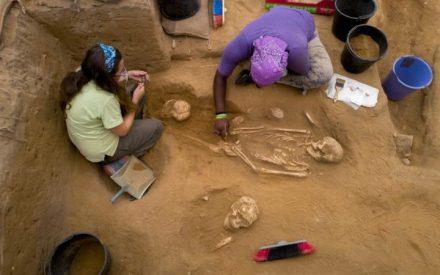 2016_shows_workers_uncovering_a_skeleton-large_trans++TpQNkEsZM9dtjYvDPpd1c7du0TL-Cg_AMOUqySXmFgU